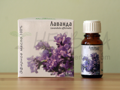 Lavender 100% Essential Oil (Lavandula officinalis)