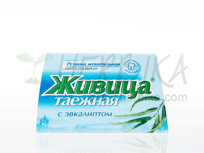 Chewing Resin with Eucalyptus