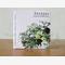 Cypress 100% Essential Oil (Cupressus sempervirens)